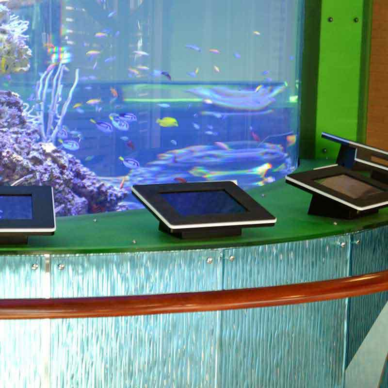 Aquarium Display